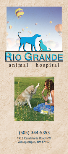 Animal Hospital Brochure by Artistic Design & Print